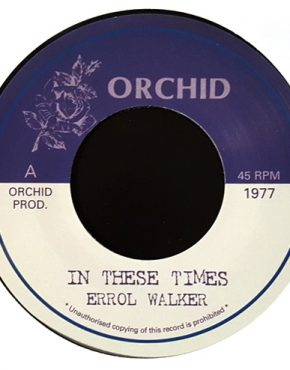 In these Times - Errol Walker - Orchid 7