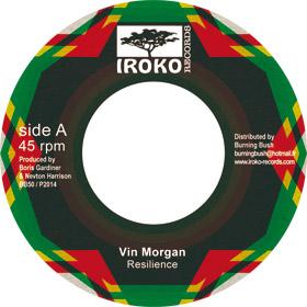 Resilience - Vin Morgan - iroko 7