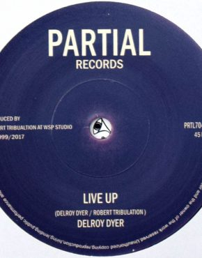 PRTL7049 - Live Up - Delroy Dyer - Partial Records 7
