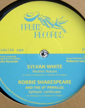 FTR011 - Mother Nature - Sylvan White - Fruit Records 12