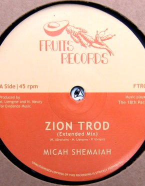 FTR014 - Zion Trod - Micah Shemaiah - Fruits Records 12