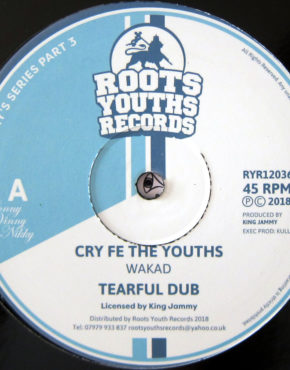 RYR12036 - Cry Fe The Youths - Wakad - Roots Youths Records 12